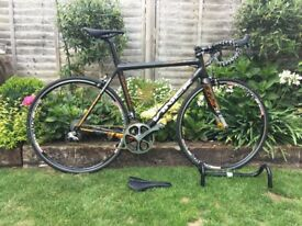 Viner Maxima RS 3.0 Carbon Racing Bicycle Dura Ace 9070 Di2 Chris King R45 Stans Alpha Wheelset