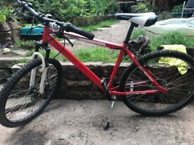 Muddyfox mountain bike