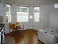 Very Large LGF South Facing Studio Flat on Pembridge Sq, Notting Hill
