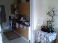 Box room in clean and tidy house with Europeans