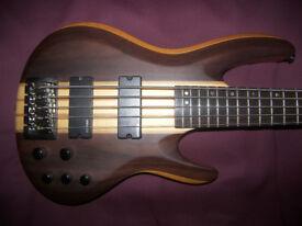 ESP LTD B-5E NS , Natural Satin 5-String Active Bass Guitar.