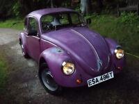 1979 Volkswagen Beetle LHD Needs Welding