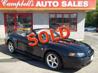 2004 Ford Mustang GT THIS CAR HAS BEEN PAMPERED AND IS MINT!! AI