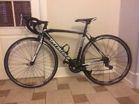 Specialised Allez Sport Road Bike 51cm