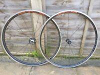 Fulcrum Racing 5 5 Road Bike Wheels Shimano Freehub