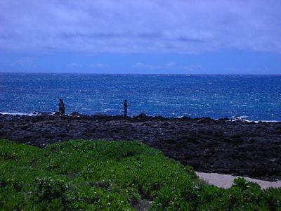 HawaiiFlyGuy