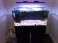 Aqua One MiniReef 180 + Cabinet + Sump + Light + Brackets