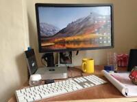 Mac mini & dell monitor