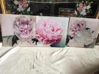 3 canvas flower picture v.good condition £5 set