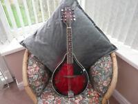 CHORD mandolin