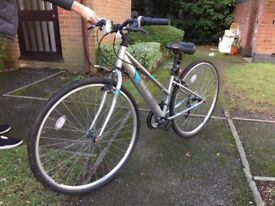 Adult men/women road bike in good condition, with lock and lights!