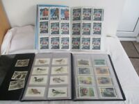 Job Lot of 3 x Collectors Card Albums & Cards ~ Approx 350 Various Cards in Total