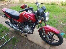 Yamaha, YBR, 2009, 124 (cc)