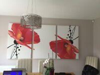3 x large poppy prints