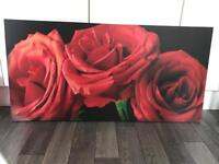 Red rose canvas/frame