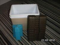 Cool Box + 3 x ice packs