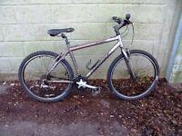 "27 Speed Ridgeback Hybrid Mountain Bike. Fully Serviced & Guaranteed. Lightweight 19"" Alloy Frame"