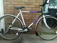 Raleigh pioneer spirit bike.