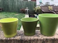 Green flowers pots