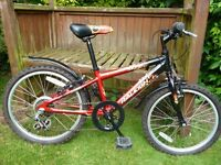 Raleigh Hotrod child's mountain bike