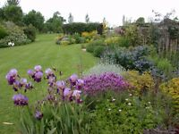 Planters needed for Garden Design Company in East Sussex