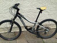 Specialized bike 49 cm ratio