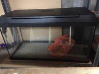Fish tank/ aquarium