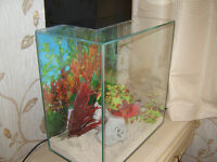 fulval edge large tank with day/night led lights as new