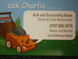 Garden and Gutter Maintenance - honest and reliable