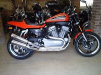 STUNNING 2009 HARLEY DAVIDSON XR1200 FLAT TRACKER £1000'S SPENT! SHOWROOM CONDITION