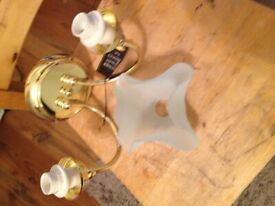 brass and glass double lights