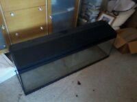 Fish Tank 4'