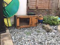 Rabbits hutch