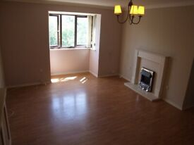A Spacious Two Bedroom Flat Close to Tottenham Hale Tube and Overground Station