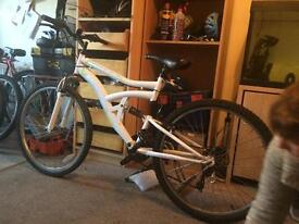 Readier 18 speed mountain bike