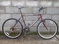 mens bike raleigh nitro 26''