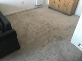 Brand New Grey Silver Carpet with backing and underlay