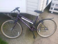 Raleigh enigma 10 speed sis gearing system
