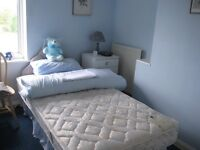rooms to rent - house share