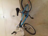 Girls sportex bike