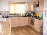 Excellent House for Rent - St. James' Area, West Belfast