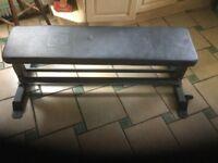 Strength shop flat weight bench
