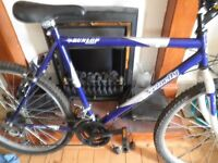fantastic condition mountain bike