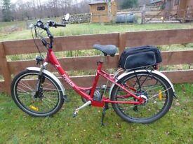 FreeGo Hawk Electric Bicycle.