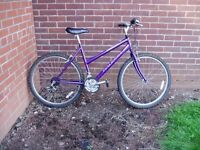 "RALEIGH, LADIES, MOUNTAIN BIKE, 19"" FRAME, 26"" ALLOY WHEELS, FULLY SERVICED."