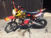 Pit bike need gone today