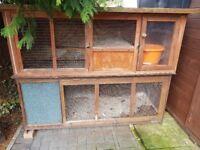 Rabbits house