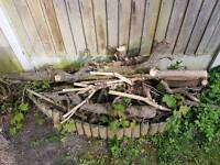 FREE logs for collection