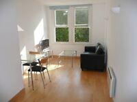 City 1 bedroom short let (minimum 3 months) near St. Paul's