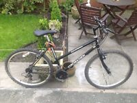 LADIES MOUNTAIN BIKE VERY GOOD TYRES ALL RIDES VERY WELL CLEAN BIKE